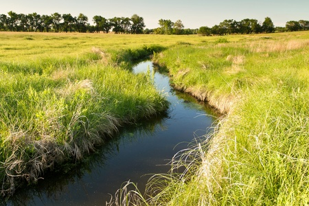 creek winding through Kansas pasture field 版權商用圖片