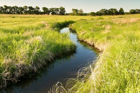 creek winding through Kansas pasture field Archivio Fotografico