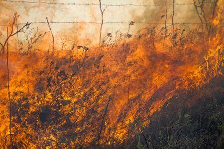 burning prairie grass, Flint Hills, Kansas