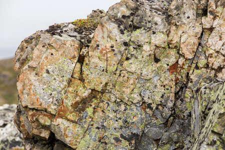 rock face on Fogo Island, Newfoundland Imagens