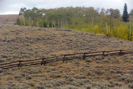 Wood rail fence throughs sagebrush on Wyoming hillside
