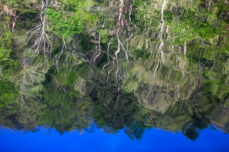 trees reflected in rippled waters of Mountain Fork River, southeast Oklahoma Imagens