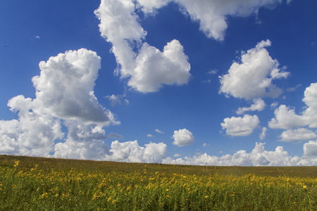 cumulus clouds, blue sky over Flint Hills of Kansas Banco de Imagens