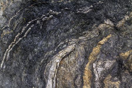 curved and folded rock layers along Newfoundland coast