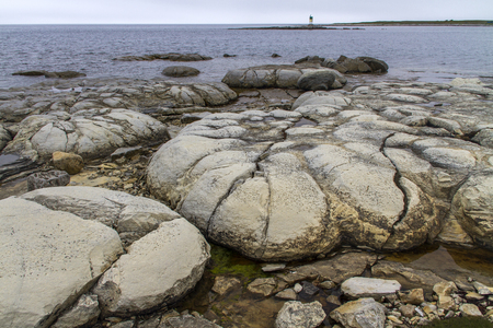 ancient thrombolite formations at Flowers Cove, Newfoundland
