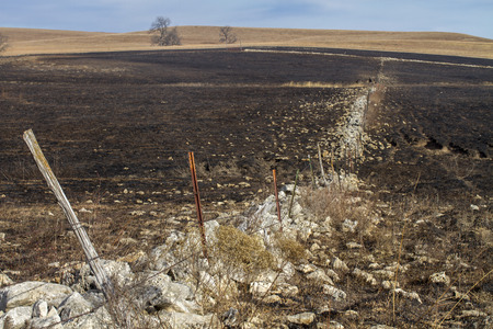 old stone fence and steel post fence through burned prairie grass, Kansas