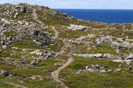 winding path through rocky coastline at Bonavista, Newfoundland Banque d'images - 133204265