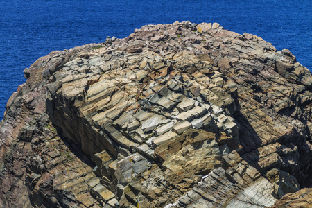 layered and fractured rock on small island near Bonavista, Newfoundland Banque d'images - 133204374