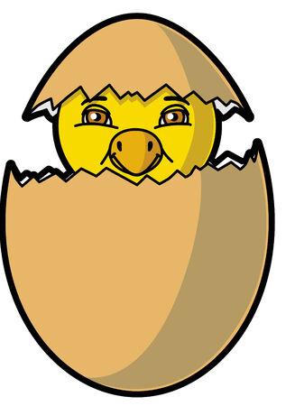 chick: Chick saliendo del huevo