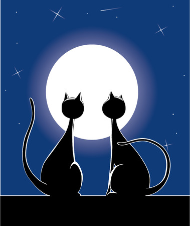 Cat at night Stock Vector - 2585159