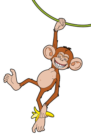 Monkey with a banana  hanging of  liana Vector