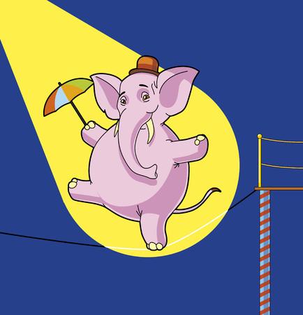 tightrope: Elephant tightrope wandelaar