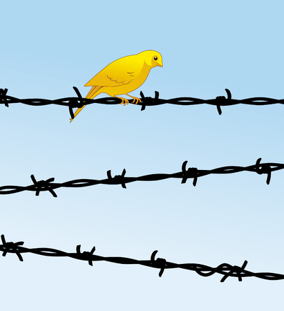 Yellow bird on barbed wire Vector