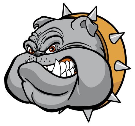 bulldog: Bulldog cabeza