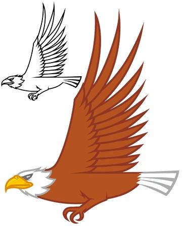 cartoon eagle: Isolated illustration Eagle flying design Stock Photo