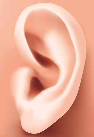 listen ear: Orecchio closeup