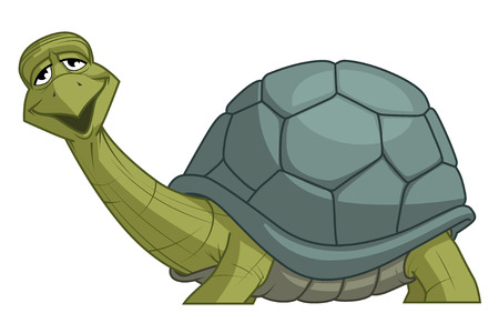 fullbody: Isolated illustration of a turtle