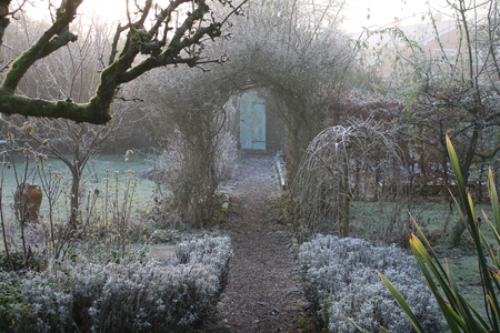 A view of a frosted Winter Garden with path leading to secret door