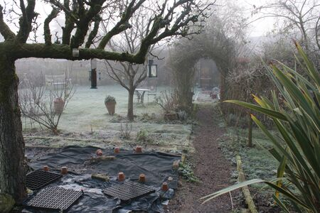 Beautiful frosty cold icy freezing landscape in organic English garden with espalier pear tree barren trees shrubs pot plants in Winter with a gravel path leading under a rose arch by grass lawns Standard-Bild
