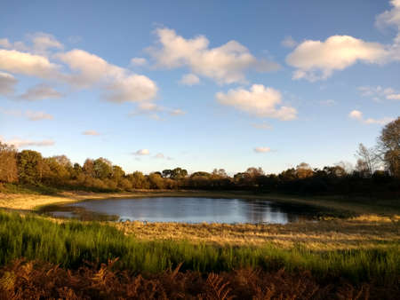 Landscape of beautiful ancient mere still calm water lake in nature reserve in Brandon East Anglia England uk in Autumn with blue skies and common land with wildlife birds trees bushes in bright Fall