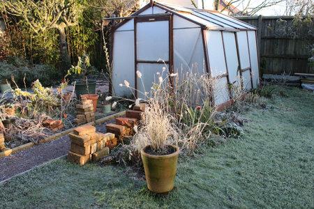 Landscape of frozen Winter garden in heavy white frost with misty pane glass greenhouse, icy lawn beside path and plants pots trees in Winter freeze seasonal frosty weather in Norfolk England Standard-Bild