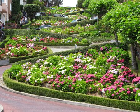 lombard street at san francisco photo