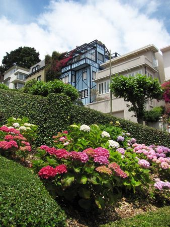 detail of lombard street at san francisco during summer time photo