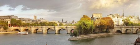 paris skyline: bridge and building at the historical center of Paris Stock Photo