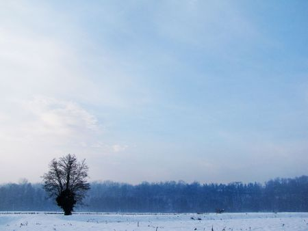 snowlandscape: silence in countryside during winter time Stock Photo