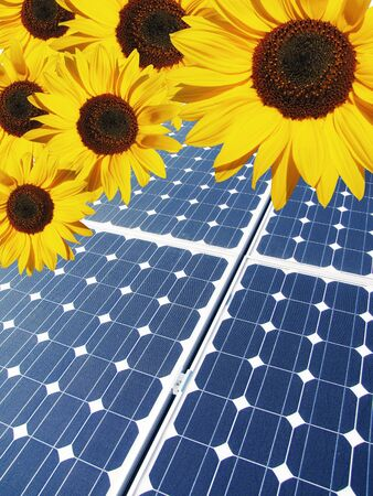 solar panel and sunflower photo