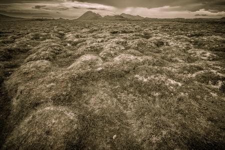 diffusion: moss diffusion over lava ground