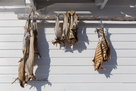 dried fish under the sun Stock Photo