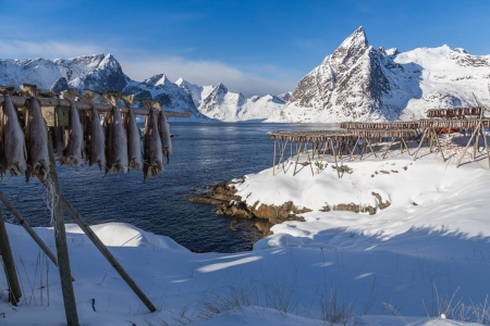 lofoten island beautiful natural landscape Stock Photo