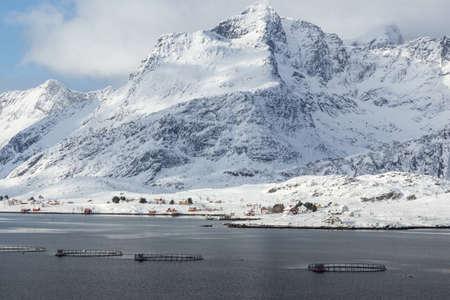 artic circle: lofoten island during winter time