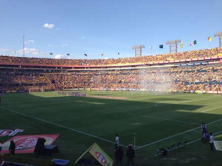 Football match Banco de Imagens - 20906128