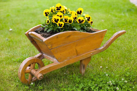 barrow: Brown barrow with yellow flowers in green grass background