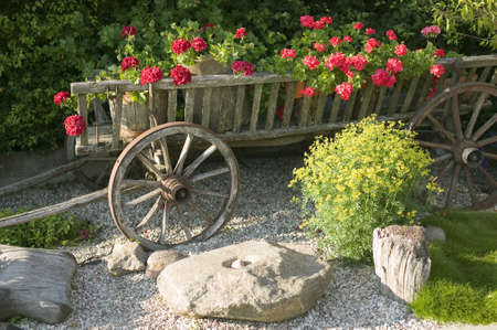 Old wooden wagon filled with flowers, nature concept photo