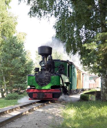 tremante: Vecchio treno verde trema sulla ringhiera in metallo