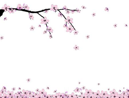 Branch van het prachtige seizoen roze kersenbloesem Vector Illustratie