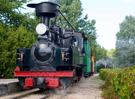 The old train is railing through forest photo