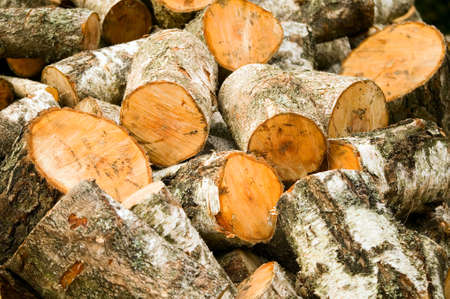 firewood background: Texture made from wooden cut firewood, background