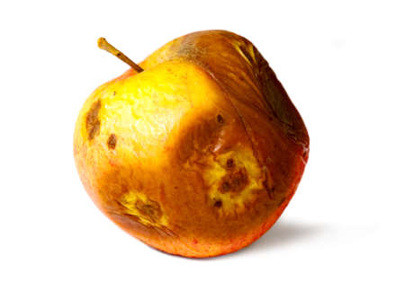 uneatable: Old rotten apple on white isolated background, unhealthy to eat