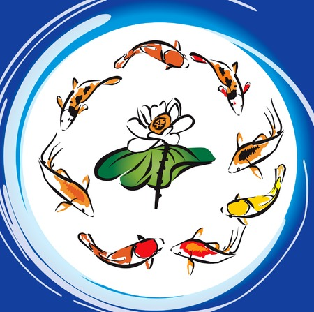 8 Koi Fish Around the Lotus Flower Vector