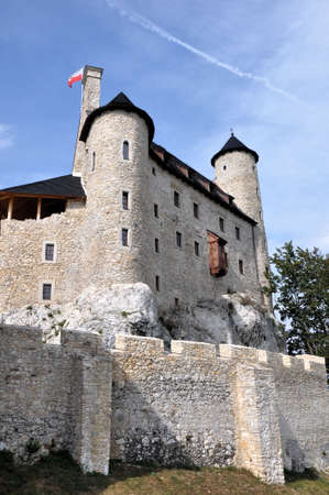 eagle nest rock: Castle of Bobolice, Poland