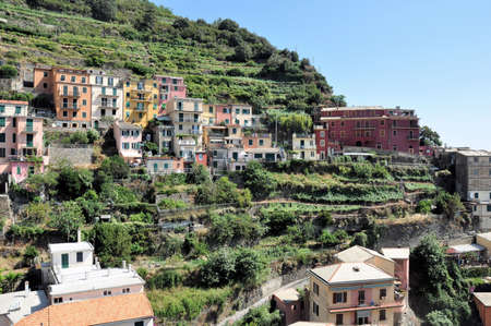 A view of Manarola, one of the five villages of the Cinque Terre on Italy photo
