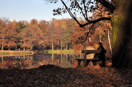 banc de parc: Un couple de personnes �g�es dans le parc, assis sur un banc sous l'arbre en automne Banque d'images