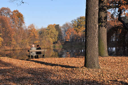 A senior couple in the park, sitting on a bench under the autumn tree. photo
