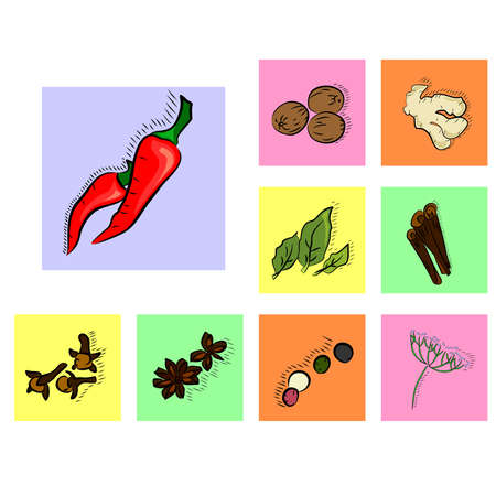 pungent: illustration dedicated to the icons dedicated to spices. Illustration
