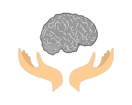 knowledgeable: illustration, which is symbolically shown as a hands supports brain. Illustration