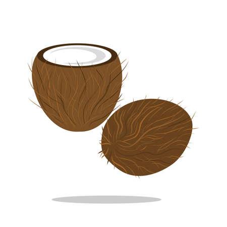 cocotier: Illustration avec le dessin d'une noix de coco ouvertes.